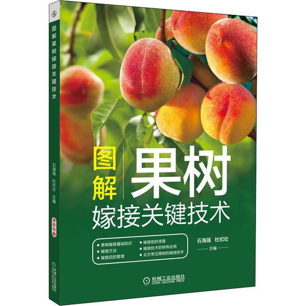 图解果树嫁接关键技术石海强机械工业出版社9787111676225语言文字