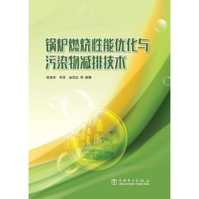 鍋爐燃燒 能優化與污染物減排技術束繼偉中國電力出版社9787519810726自然科學