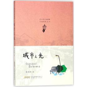 城市之光/范小青小说典藏长篇都市系列范小青安徽文艺出版社9787539662169