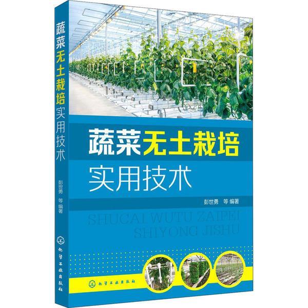 蔬菜无土栽培实用技术彭世勇化学工业出版社9787122382948语言文字