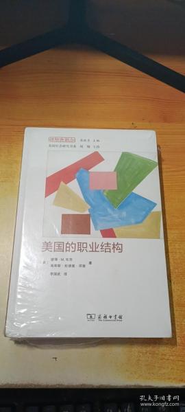 美国的职业结构(经验与观念丛书)