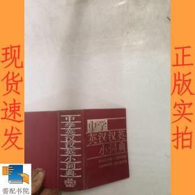 中学英汉汉英小词典