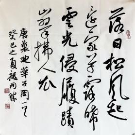 龙开胜书法作品真迹,中国书法家协会理事,北京书协副主席,唐诗斗方。