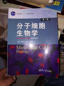 """分子细胞生物学(第2版)/普通高等教育""""十一五""""国家级规划教材"""