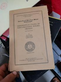 MISSISSIPPIAN FAUNA IN NORTHWESTERN SONORA MEXICO  缺后皮
