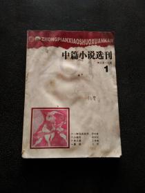 中篇小说选刊-2011年 第1期(总第178期)