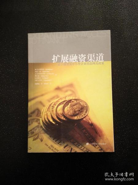 扩展融资渠道:适合微型及中小型企业的范例及政策(引进版)