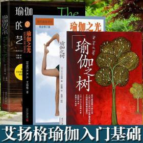 正邮 瑜伽之树 瑜伽之光 瑜伽的艺术(全三册)艾扬格瑜伽入门教程 瑜伽教练培训教材 瑜伽书籍 初级入门 减肥书籍