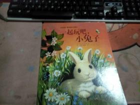 一起玩吧小兔子3-452