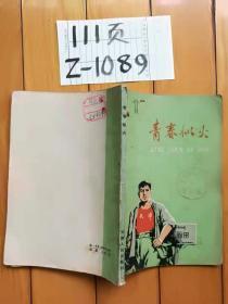 青春似火  天津人民出版社