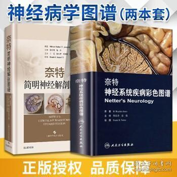 2本套 奈特简明神经解剖图谱+奈特神经系统疾病彩色图谱 精神病学 神经解剖图谱 人民卫生
