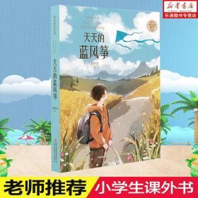 天天的蓝风筝/金色时光系列
