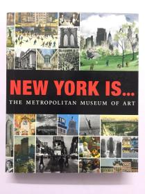 纽约大都会艺术博物馆 New york ls the metropolitan museum of