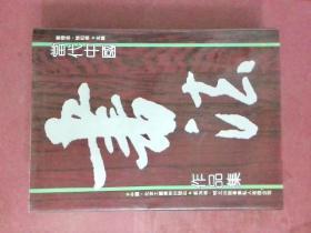 当代中国书法作品集【硬精装带护封】
