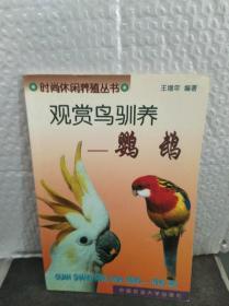观赏鸟驯养:鹦鹉