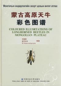 Coloured Illustrations of Longhorned Beetles in Mongolian Plateau [Chinese / Mongolian]-蒙古高原长角甲虫彩色插图[中/蒙古语]