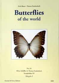 Butterflies of the World, Part 30: Nymphalidae XV. Morpho I. (Morpho niepelti and M. theseus)-世界蝴蝶,第30部分:若虫科十五。形态一(Morpho niepelti和M。特修斯)