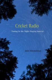 Cricket Radio-板球收音机
