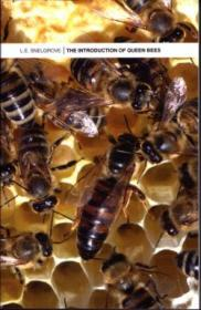 The Introduction of Queen Bees-蜂王介绍