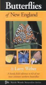 Butterflies of New England-新英格兰的蝴蝶