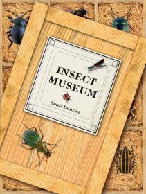 Insect Museum-昆虫博物馆