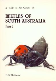 A Guide to the Genera of Beetles of South Australia, Part 2-南澳大利亚甲虫属指南,第2部分
