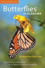 Butterflies of Alabama-阿拉巴马的蝴蝶