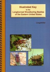 Illustrated Key to the Longhorned Woodboring Beetles of the Eastern United States-美国东部长角钻木甲虫的图解钥匙