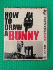艺术人生 DVD