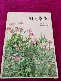 野の草花 日文原版 绘画本 精装   16开
