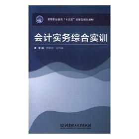 正版 会计实务综合实训 降艳琴 书店 会计制度书籍