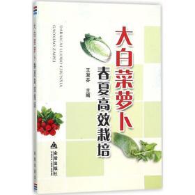 正版书  大白菜萝卜春夏高效栽培王淑芬金盾出版社 全新书籍