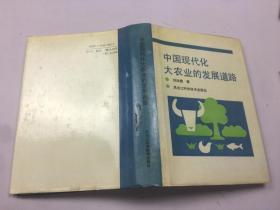 中国现代化大农业的发展道路