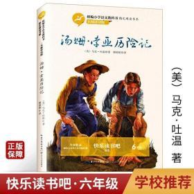 汤姆索亚历险记 名师讲读版小学6年级课外阅读长江文艺出版社