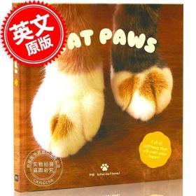 原版全新现货 猫爪爪 猫肉垫 影集 设定集 英文原版 Cat Paws 喵爪肉垫的特色写真 猫蛋蛋