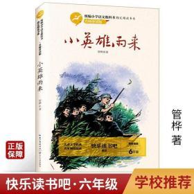 小英雄雨来 名师讲读版小学生6年级课外阅读书籍长江文艺出版社