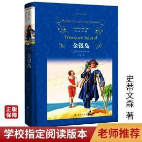 经典译林金银岛 史蒂文森著王宏译精装版外国长篇历险小说故事书