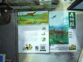 森林报·夏(美绘全译本) /[苏]比安基 河北少年儿童出版社 9787537640343