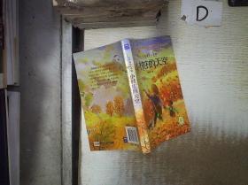 少年励志小说馆:小村庄的天空 /刘晓慧 湖北少儿出版社 9787535377807