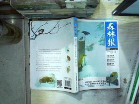 森林报·冬(美绘全译本) /[苏]比安基 河北少年儿童出版社 9787537640329