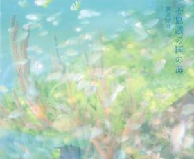 键井靖章摄影集「不思議の国の海」 潜水摄影 海底