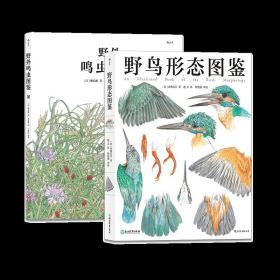 野鸟鸣虫图鉴2册套装赠定制帆布包 生物自然观察学生科普