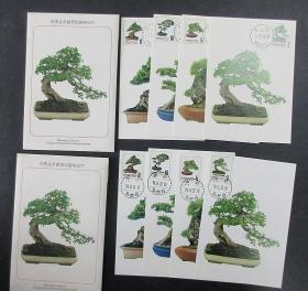 专224盆景邮票原图卡 2套 一套台北英文戳 1605