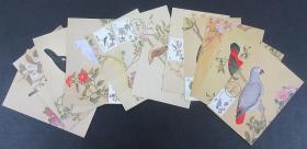 故宫鸟谱八十八、八十九、九十年版古画图卡各一套(均带封套)1608