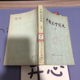 中国文学简史 上册