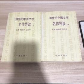 20世纪中国文学名作导读 上下册