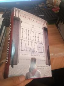 A NIGHT DIVIDED /不详