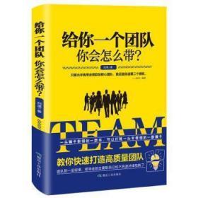 RT-bs正版 给你一个团队你会怎么带?刘漠煤炭工业出版社书籍启始天晟图书专营店