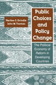 Public Choices And Policy Change