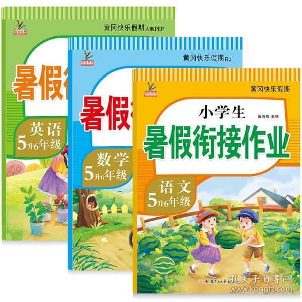 新版五年级数学暑假作业部编人教版5升6年级暑假衔接作业(复习+预习)